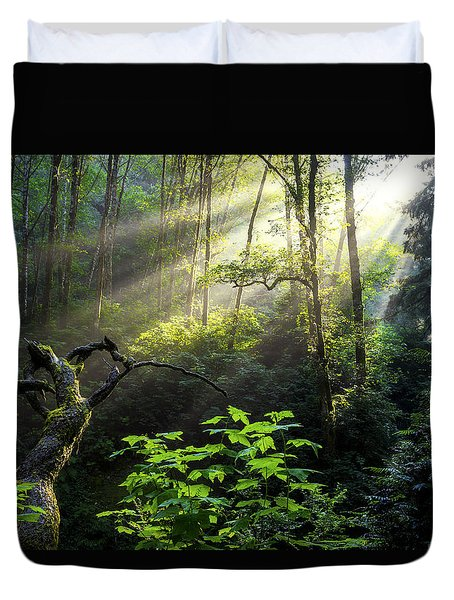 Sacred Light Duvet Cover by Chad Dutson