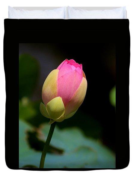 Sacred Lotus Bud 3 Duvet Cover