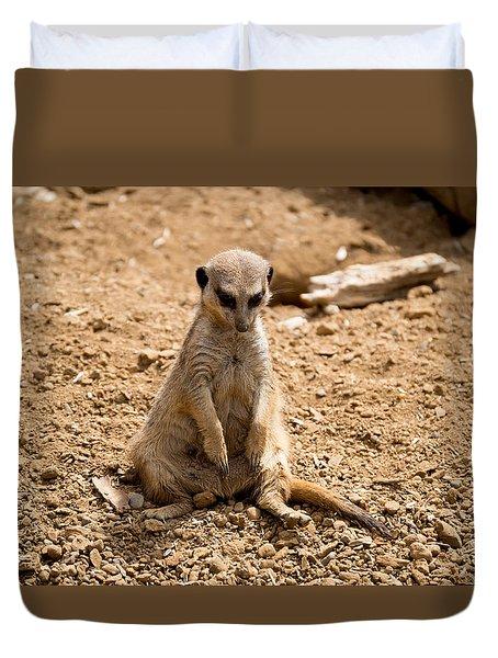 Duvet Cover featuring the photograph Sad Meerkat by Scott Lyons