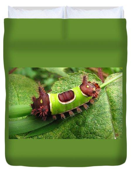 Saddleback Caterpillar Duvet Cover