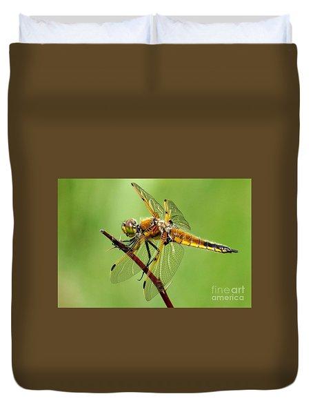 Saffron-winged Meadowhawk Duvet Cover