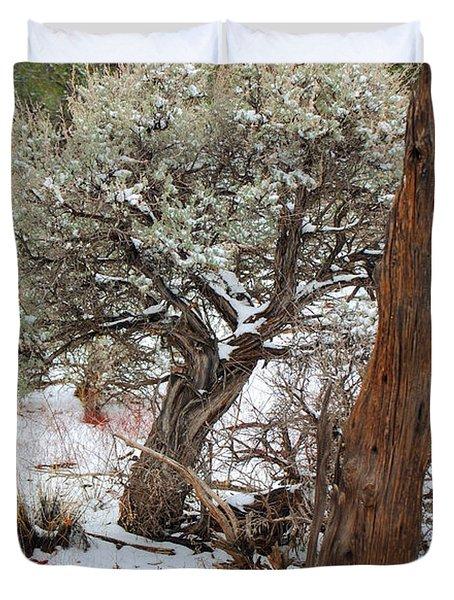 Sage Bush Grand Canyon Duvet Cover by Donna Greene