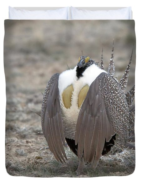 Sage Grouse Duvet Cover