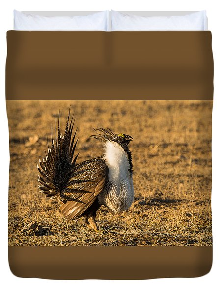 Sage Grouse Mating Display Duvet Cover