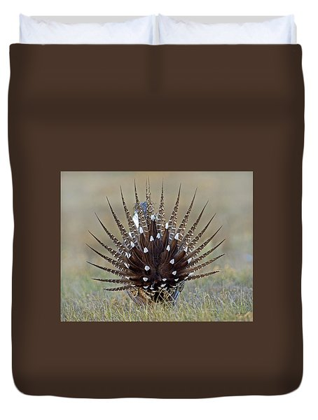 Sage-grouse Tail Fan Duvet Cover