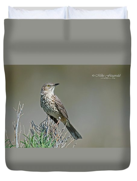 Sage Thrasher Duvet Cover