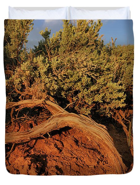 Duvet Cover featuring the photograph Sagebrush At Sunset by Ron Cline