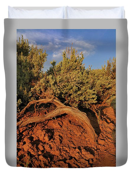 Sagebrush At Sunset Duvet Cover