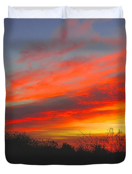 Saguaro Winter Sunrise Duvet Cover