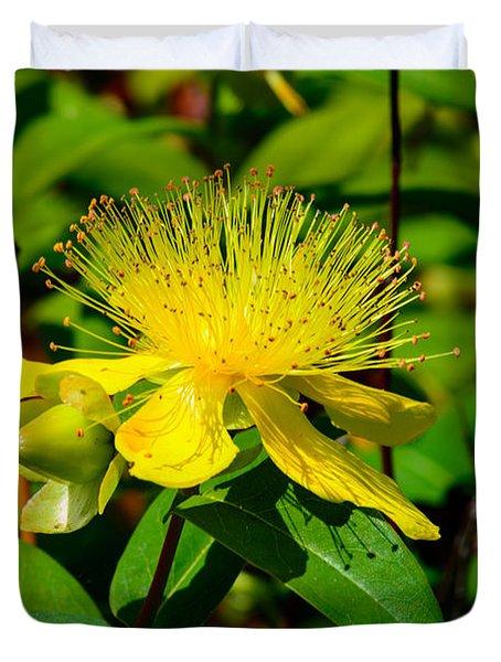 Saint John's Wort Blossom Duvet Cover