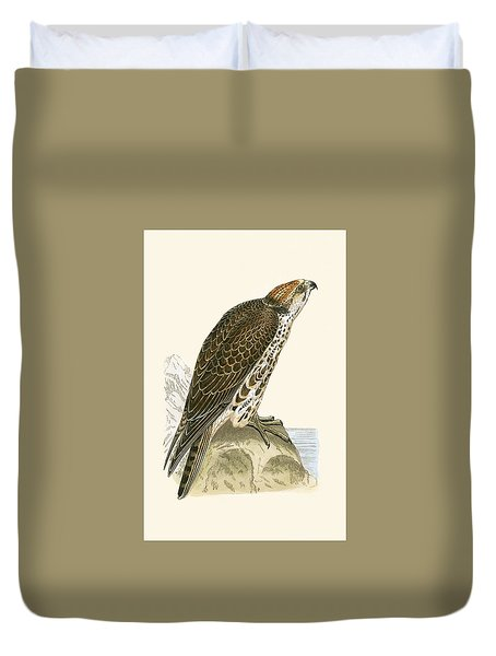 Saker Falcon Duvet Cover by English School