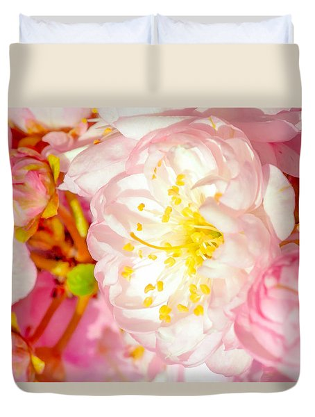 Sakura Cherry Flower - Wedding Of Nature Duvet Cover