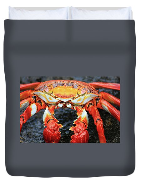 Sally Lightfoot Crab Duvet Cover by Sue Cullumber