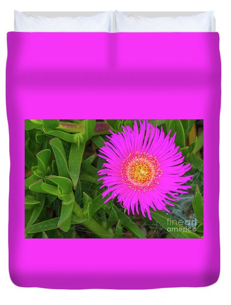 Sally-my-handsome Succulent Flower - Carpobrotus Acinaciformis Duvet Cover