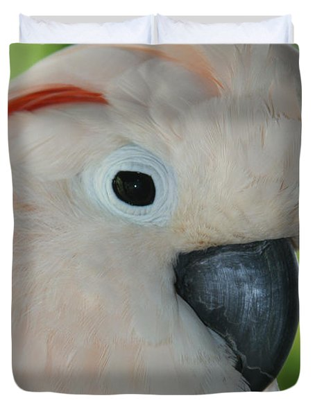 Salmon Crested Moluccan Cockatoo Duvet Cover by Sharon Mau