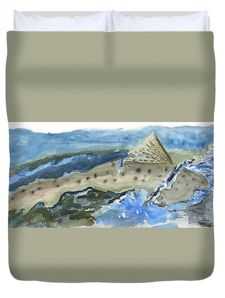 Salmon Surface Duvet Cover