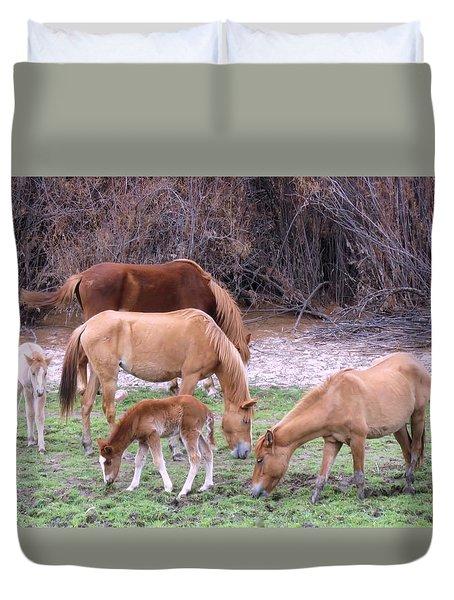 Salt River Wild Horses In Winter Duvet Cover