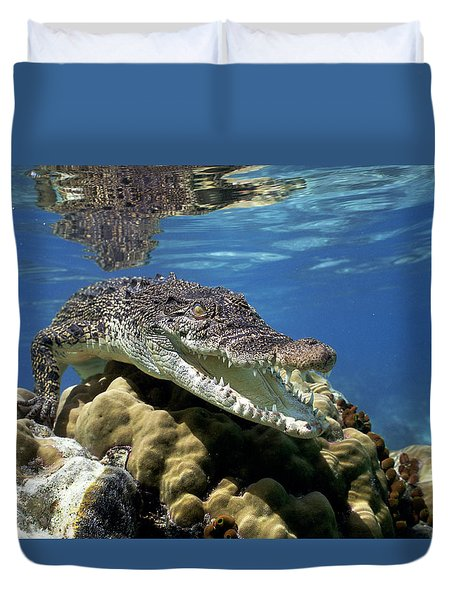 Saltwater Crocodile Smile Duvet Cover by Mike Parry