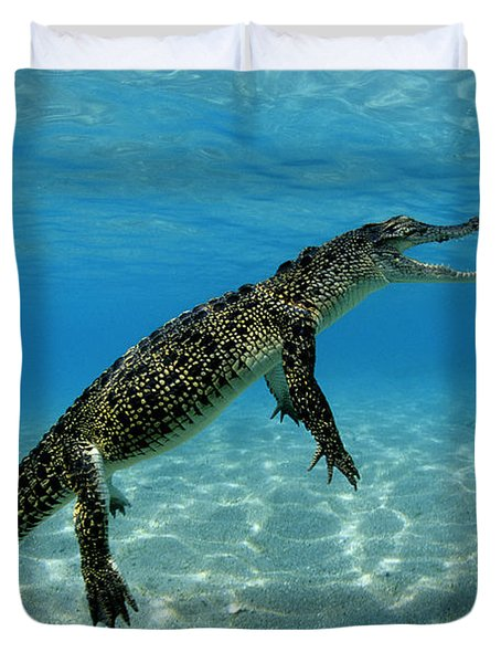 Saltwater Crocodile Duvet Cover by Franco Banfi and Photo Researchers