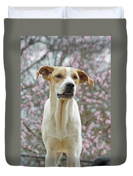 Sam In Spring Duvet Cover