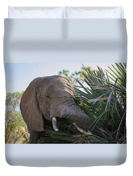 Samburu Elephant Duvet Cover by Gary Hall