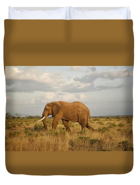 Samburu Giant Duvet Cover by Gary Hall