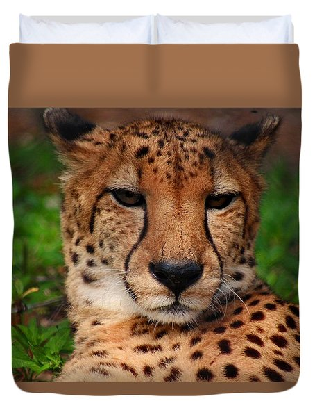 Duvet Cover featuring the photograph Samson by Michiale Schneider