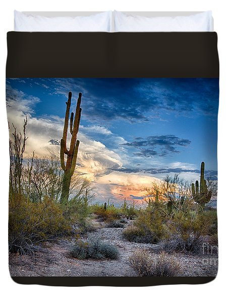 San Tan Mountain Park Sunset Duvet Cover