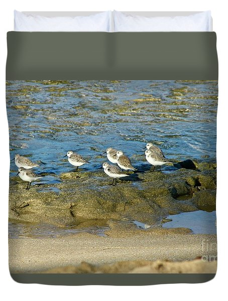 Sanderling Gather Duvet Cover