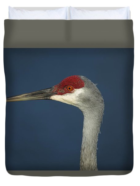Sandhill Blues Duvet Cover