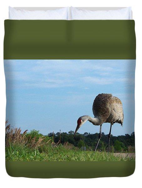 Sandhill Crane 018 Duvet Cover
