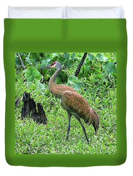 Duvet Cover featuring the digital art Sandhill Crane At Sandy Ridge Reservation by Mark Madere