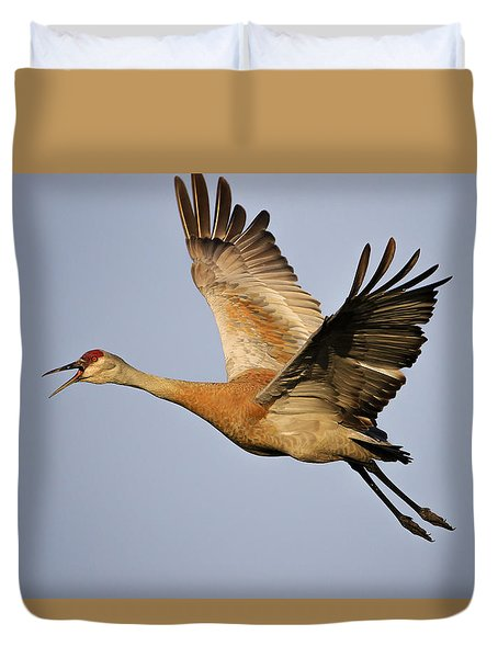 Duvet Cover featuring the photograph Sandhill Crane In Flight by Gary Hall
