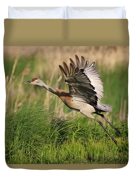 Duvet Cover featuring the photograph Sandhill Crane Lift Off by Gary Hall