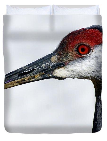 Sandhill Crane Duvet Cover by Marty Koch
