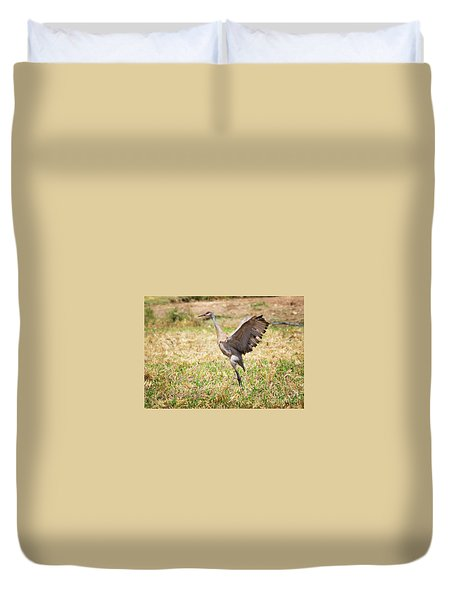 Duvet Cover featuring the photograph Sandhill Crane Morning Stretch by Ricky L Jones