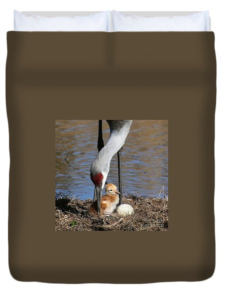 Sandhill Crane New Family Duvet Cover by Myrna Bradshaw