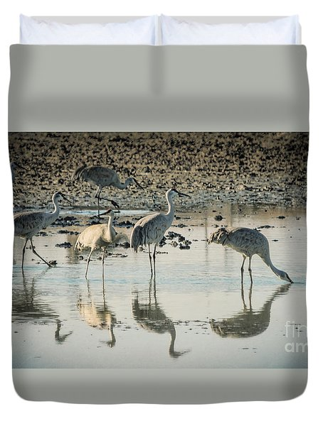 Sandhill Crane Reflections Duvet Cover