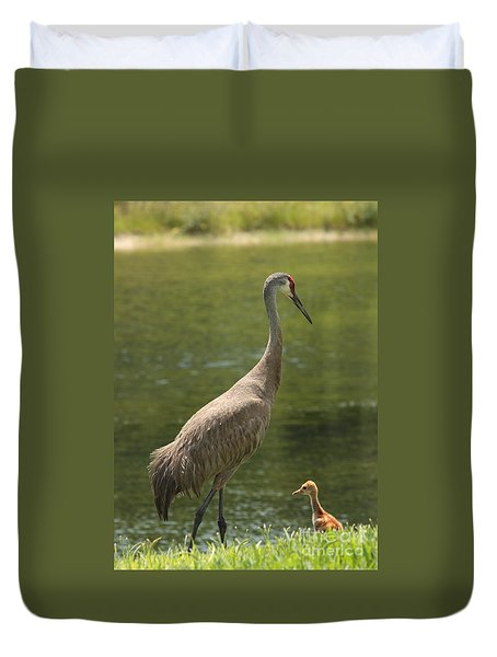 Sandhill Crane With Baby Chick Duvet Cover by Carol Groenen