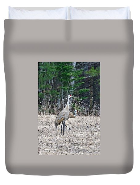 Duvet Cover featuring the photograph Sandhill Cranes 1166 by Michael Peychich