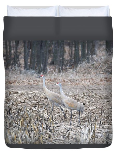 Duvet Cover featuring the photograph Sandhill Cranes 1171 by Michael Peychich