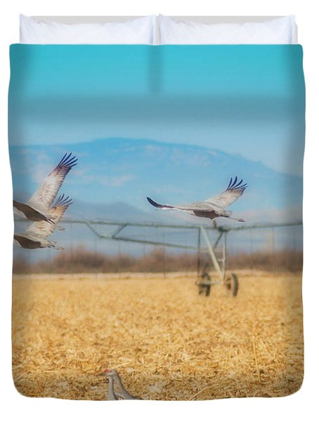 Sandhill Cranes In Flight Duvet Cover