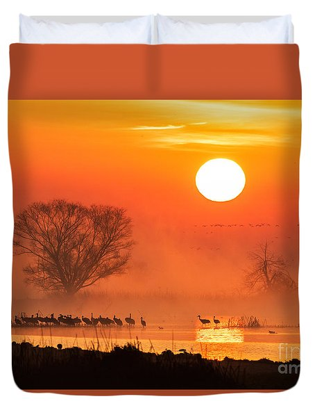 Sandhill Cranes In The Misty Sunrise Duvet Cover