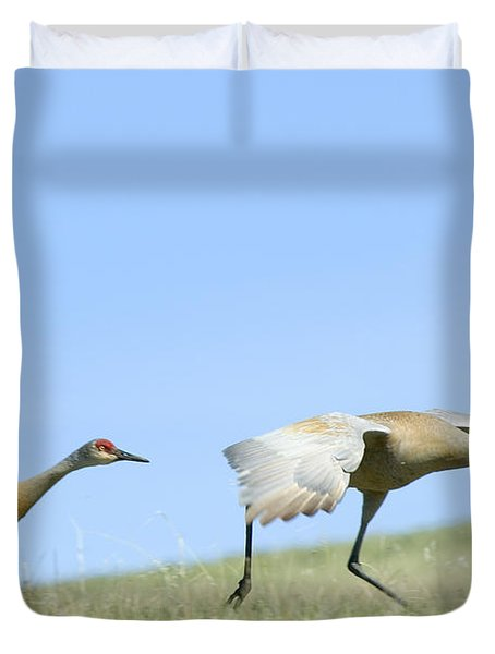 Sandhill Cranes Taking Flight Duvet Cover