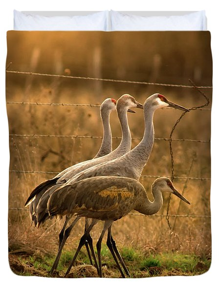 Duvet Cover featuring the photograph Sandhill Cranes Texas Fence-line by Robert Frederick
