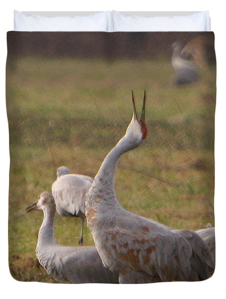 Duvet Cover featuring the photograph Sandhill Delight by Shari Jardina