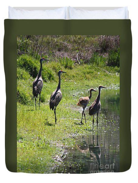 Sandhill Family By The Pond Duvet Cover by Carol Groenen