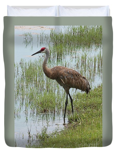 Sandhill In The Marsh Duvet Cover