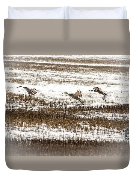 Duvet Cover featuring the photograph Sandhill Touch Down by Daniel Hebard
