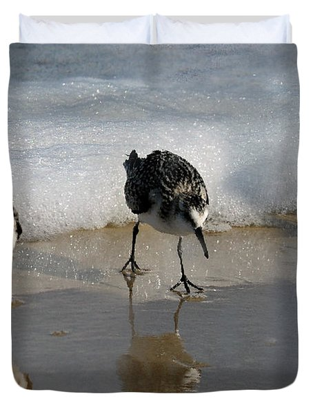 Sandpipers Feeding Duvet Cover